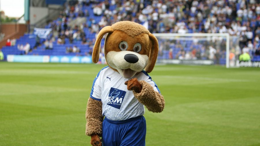 Tranmere Rovers' mascot, a dog called Rover, fistpumps on the pitch
