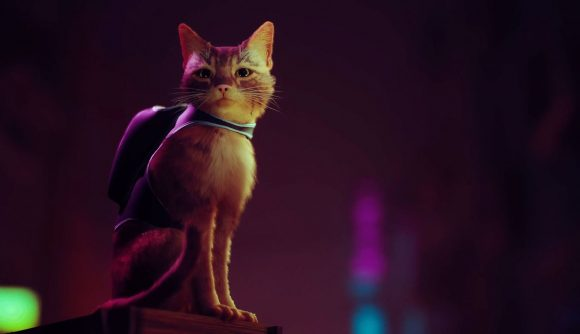 A cat with a backpack sits on a pillar looking on as the neon light casts a shadow